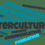 Définition du management interculturel en entreprise.