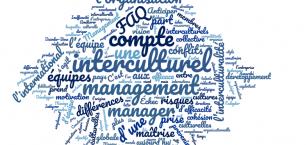 Management interculturel définition. Qu'est-ce que le management interculturel ?